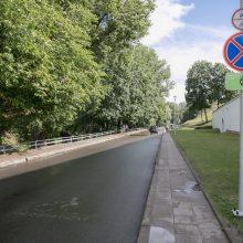 Nepaisant protestų, K. Škirpos alėja bus pervadinta į Trispalvės