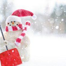 Orai: sniegas jau pakeliui, bet ar spės iki Kalėdų?