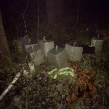 Pasieniečiams įkliuvo per sieną cigaretes į Lietuvą  įmetę du asmenys