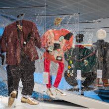 MO muziejuje – pažintis su 90-aisiais atsiradusiomis rūšimis