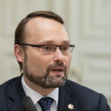 Kultūros ministras su Ukrainos ambasadoriumi aptarė tolesnį kultūros bendradarbiavimą
