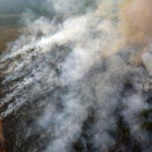 Didžiojo septyneto šalys ketina skirti lėšų kovai su miškų gaisrais Amazonėje
