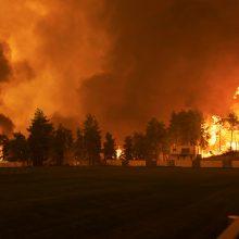ES padeda Graikijai ir kitoms regiono šalims gesinti miškų gaisrus