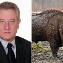 Seime komitete – neeilinis posėdis dėl stumbrės medžioklės