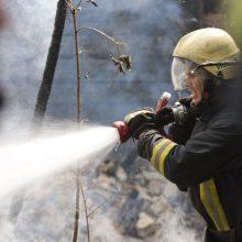 Per gaisrą Molėtų rajone žuvo moteris