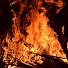 Savaitgalį Lietuvoje kilo beveik du šimtai žolės gaisrų