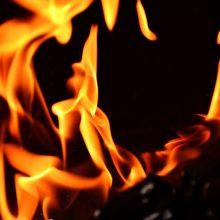 Per parą Lietuvoje kilo 39 žolės gaisrai: išdegė daugiau nei 34 hektarai ploto