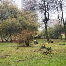 Eiguliuose netyla ginčai: gyventojai dėl svajonių kiemo aukoja medžius