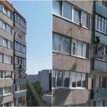 Vilniuje – katino gelbėjimo operacija: pavojingai įstrigo dešimto aukšto lange