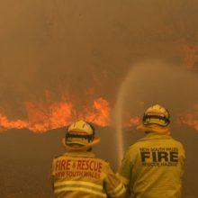 Ekspertai: Australijoje šimtus žmonių pražudė miškų gaisrų dūmai