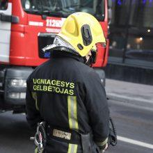 PAGD: šiemet sumažėjo gaisrų, tačiau žmonių juose žuvo daugiau