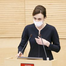 Seimo pirmininkė: kol kas saugiau nekalbėti apie rinkimų sistemos pertvarką