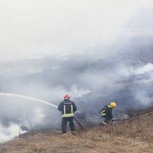 Žolės degintojams gresia baudos, teks atlyginti ir padarytą žalą gamtai