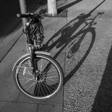 Kybartuose iš įvykio vietos pasišalino dviratininkę kliudęs automobilis