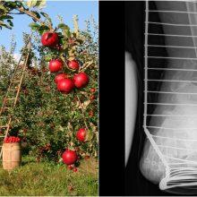 Atėjus rudeniui – viešas Kauno medikų kreipimasis į vaikus ir anūkus