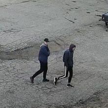 Alytaus pareigūnai ieško, kas apgadino automobilį: prašo atpažinti vyrus nuotraukoje