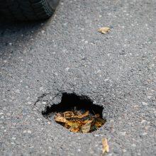 Uostamiesčio gatvėse veriasi smegduobės