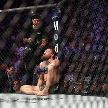 Brangiausioje UFC kovoje Ch. Nurmagomedovas prismaugė C. McGregorą ir sukėlė skandalą