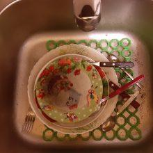 Kaunietė – apie iš čiaupo bėgantį purviną vandenį: vargstame pusę metų