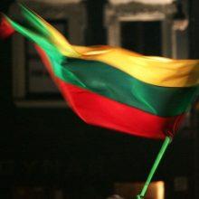 Vilniuje jaunuolis nuo pastato nuėmė valstybės vėliavą ir ją sudraskė