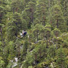 Norvegijoje sudužus sraigtasparniui žuvo keturi žmonės