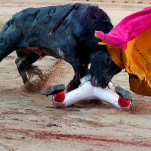 Ispanijoje per festivalį bulius mirtinai subadė žiūrovą