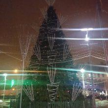 Sekmadienio vakarą užgeso Panevėžio Kalėdų eglė