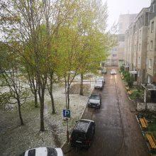 Šeštadienį Lietuvoje ne tik lijo, bet ir snigo <span style=color:red;>(vaizdo įrašas)</span>
