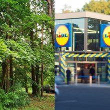 """""""Lidl"""" parduotuvė kursto aistras: gyventojai nemato prasmės iškirsti tiek medžių"""