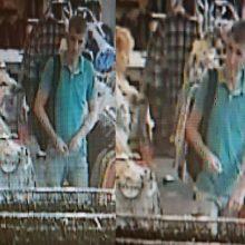 Kaunietė prašo pagalbos: vyras iš parduotuvės nugvelbė rankines