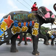 Vandens mūšiai su drambliais pradeda Tailando Naujųjų metų šventę