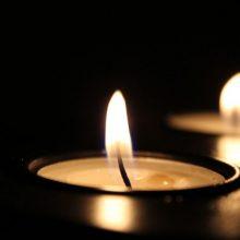Panevėžio rajone nukrito ultralengvasis lėktuvas, pilotas žuvo