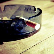 Švedija – stebuklų šalis arba kodėl švedai rūko mažiausiai?