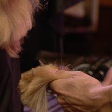D. Virbilaitė liejo ašaras dėl nurėžtų plaukų: tikrai neklausė, kiek nukirpti