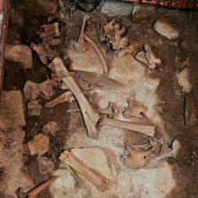 Klaipėdoje rasti galimai žmogaus kaulų fragmentai