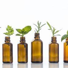 Ligoms gydyti – vaistiniai augalai