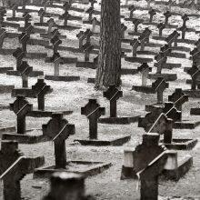 Našlaičių kapinėse bus laidojami menininkai?