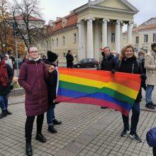LGBT vaiko mama apie palaikymo renginį prie Prezidentūros: to nesitikėjau