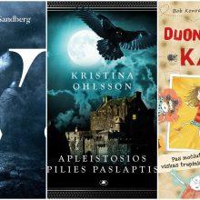 Į kokias knygas verta atkreipti dėmesį šį rudenį?