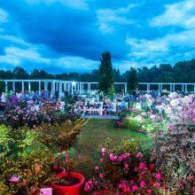 """Įspūdingoji """"Kvapų naktis"""" užlies VDU Botanikos sodo erdves"""