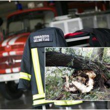 Dėl smarkaus vėjo ugniagesiai 40 kartų vyko šalinti nuvirtusių medžių