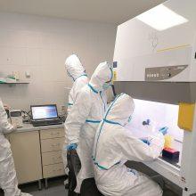 NMVRVI laboratorijoje per parą ištiriama per 500 mėginių dėl COVID-19
