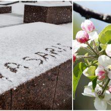 Koks pavasaris liko mūsų atmintyje ir ką apie jį sako skaičiai?