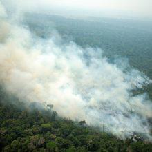 Astronautas iš TKS: Amazonės gaisrų dūmai driekiasi tūkstančius kilometrų