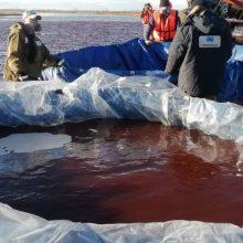 Arktyje bandoma surinkti teršalus: skelbiama, kad tai didžiausias toks išsiliejimas