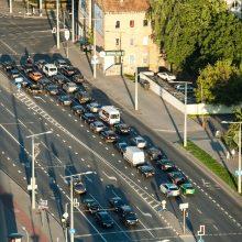 Ekonomistas: visame Vilniaus mieste automobilių stovėjimas turėtų būti mokamas