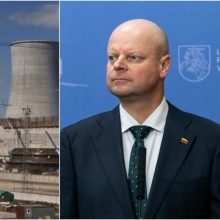S. Skvernelis: Lenkija kartoja remianti Lietuvą dėl Astravo elektros boikoto