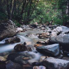 Tauragėje, įtariama, užterštas Beržės upelis