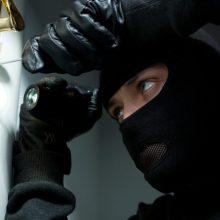 Kauno rajone 15 tūkst. eurų pagrobęs vyras pinigais pasidžiaugti nespėjo
