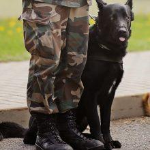 Sėkmingos nusikaltėlių gaudynės: pasieniečių šuo Praidas susekė du kontrabandininkus